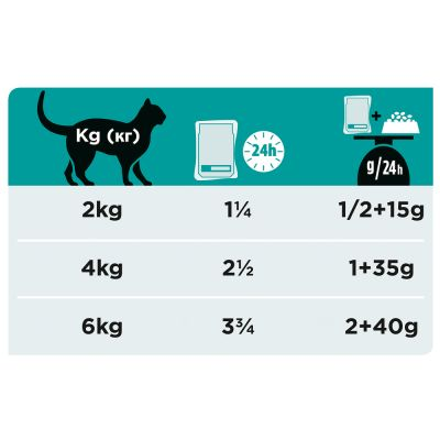 PURINA PRO PLAN Veterinary Diets EN ST/OX Gastrointestinal saumon pour chat