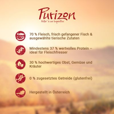 Purizon Senior Huhn & Fisch