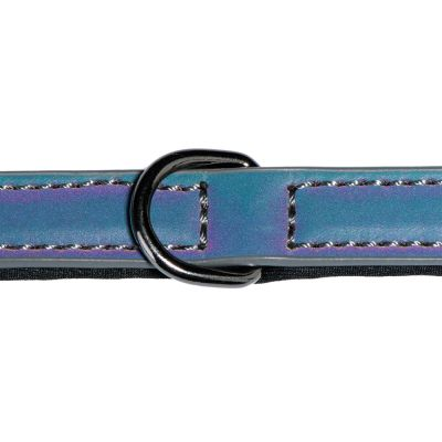Rainbow Reflection Dog Collar