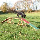 Rampe Trixie Dog Activity Agility