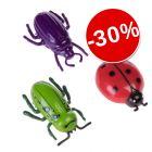 30% reducere! Jucării în formă de insecte pentru pisici