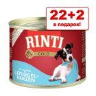 22 + 2 в подарок! RINTI Gold 24 x 185 г