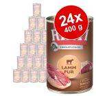 RINTI Single Protein -säästöpakkaus 24 x 400 g