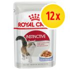 Royal Canin 12 x 85 g