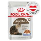 Royal Canin Ageing +12 in Gelee