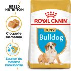 Royal Canin Bouledogue Puppy pour chiot