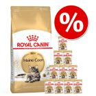 Royal Canin Breed, 4/10 kg + 12 x 85 g karmy mokrej Royal Canin w super cenie!