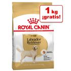 Royal Canin Breed 11/12 kg en oferta: 1 kg ¡gratis!
