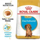 Royal Canin Breed Dachshund Puppy