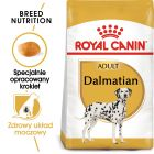 Royal Canin Breed Dalmatian Adult