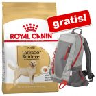 Royal Canin Breed Droogvoer + Royal Canin Rugzak gratis!