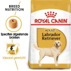 Royal Canin Breed Hondenvoer - Labrador Retriever Adult