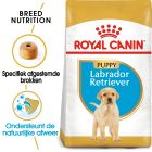Royal Canin Breed Hondenvoer - Labrador Retriever Puppy