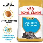 Royal Canin Breed Hondenvoer - Miniature Schnauzer Puppy