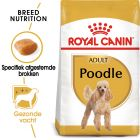 Royal Canin Breed Hondenvoer - Poodle Adult