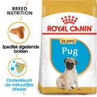 Royal Canin Breed Hondenvoer - Pug Puppy