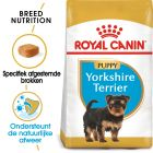 Royal Canin Breed Hondenvoer - Yorkshire Terrier Puppy