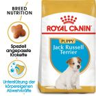 Royal Canin Breed Jack Russell Terrier Puppy