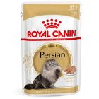 Royal Canin Breed Persian mousse