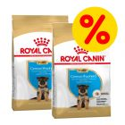 Royal Canin Breed Puppy/ Junior -säästöpakkaus