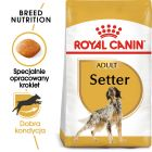 Royal Canin Breed Setter Adult
