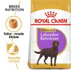 Royal Canin Breed Sterilised Labrador Retriever Adult Hrană uscată