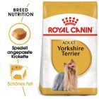 Royal Canin Breed Yorkshire Terrier Adult Hrană uscată