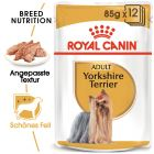 Royal Canin Breed Yorkshire Terrier