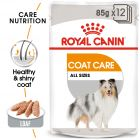 Royal Canin Care Nutrition Wet Coat Care
