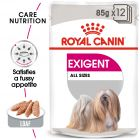 Royal Canin Care Nutrition Wet Exigent