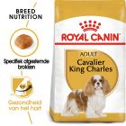 Royal Canin Cavalier King Charles Adult - Hondenvoer