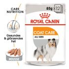 Royal Canin CCN Coat Care mokra hrana