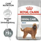 Royal Canin CCN Dental Care Maxi Hondenvoer