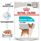 Royal Canin CCN Urinary Care Wet