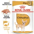 Royal Canin Chihuahua pour chien