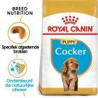 Royal Canin Cocker Spaniel Puppy - Hondenvoer