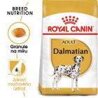 Royal Canin Dalmatin Adult