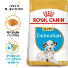 Royal Canin Dalmatin Puppy