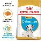 Royal Canin Dálmata Puppy