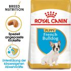 Royal Canin French Bulldog Puppy