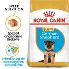 Royal Canin German Shepherd Junior pour chiot