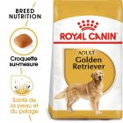 Royal Canin Golden Retriever Adult pour chien