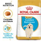 Royal Canin Golden Retriever Puppy pour chiot
