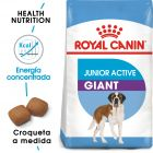 Royal Canin Junior Active Giant