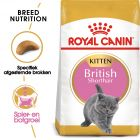 Royal Canin Kattenvoer - British Shorthair Kitten
