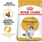 Royal Canin Kattenvoer - Norwegian Forest Cat Adult