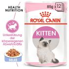 Royal Canin Kitten Instinctive en gelée pour chaton