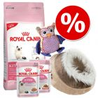Royal Canin Kitten Paket