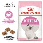 Royal Canin Kitten pour chaton