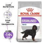 Royal Canin Maxi Adult Sterilised pour chien